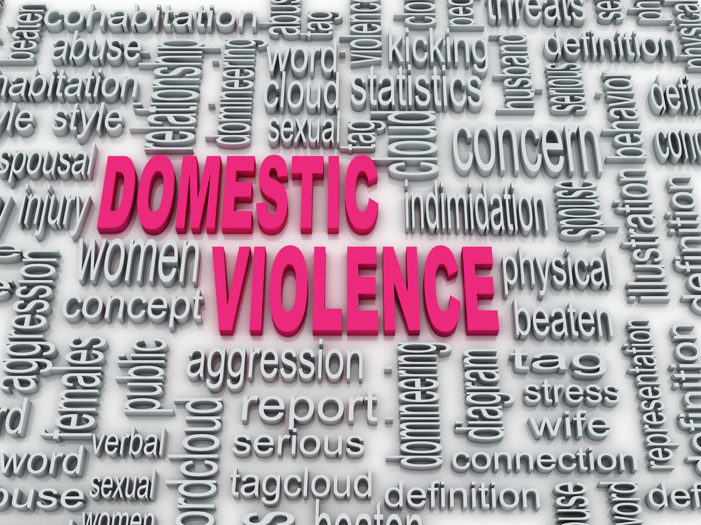What are the opposing point of view of Domestic Violence?